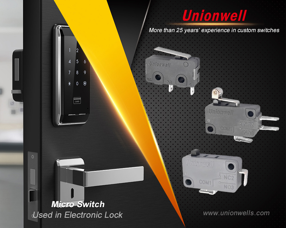 micro switch manufacturer13