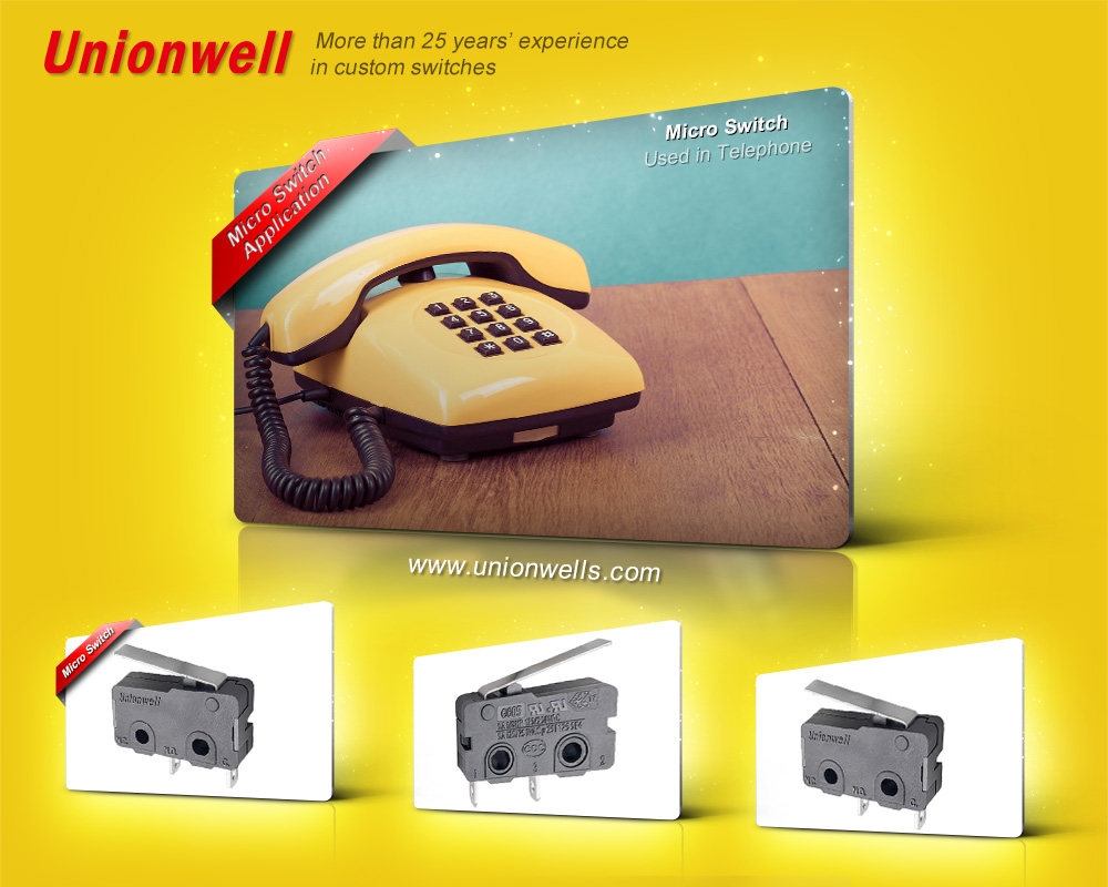 Micro Switch Supplier 1 (38)